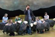The-Shepherds-Life-6-1024x684.jpg